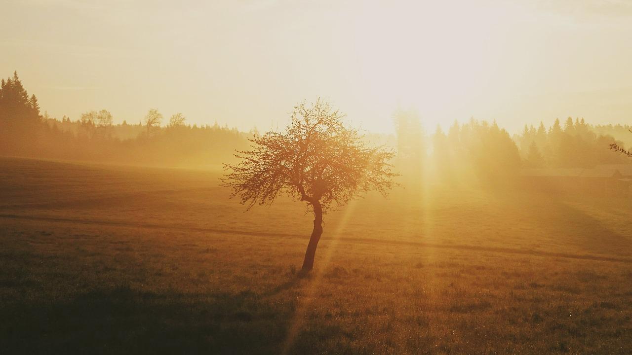Die Morgenmeditation Starte Frisch Und Klar In Den Tag
